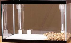 Очистка воды в аквариуме (фильтры)