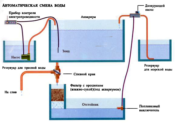 Замена воды в аквариуме (как