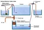 Замена воды в аквариуме (как правильно и сколько воды нужно менять)