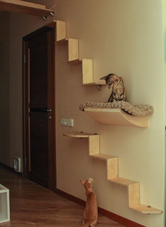 Сделать своими руками лесенку для кошки 55