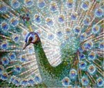 Мозаика. Виды мозаики и способы монтажа на стену