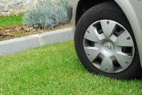 Плюсы и область применения решеток для газона